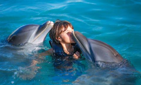 Moon Palace Jamaica Kid Dolphins