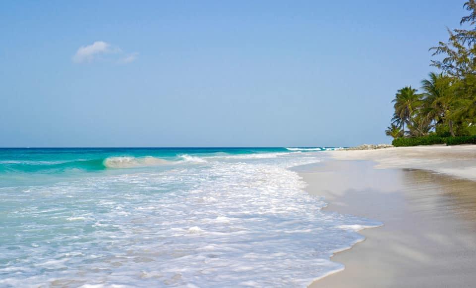 Turtle Beach Barbados Beach