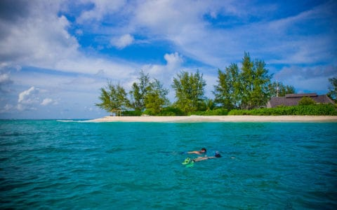 Denis Private Island Snorkelling