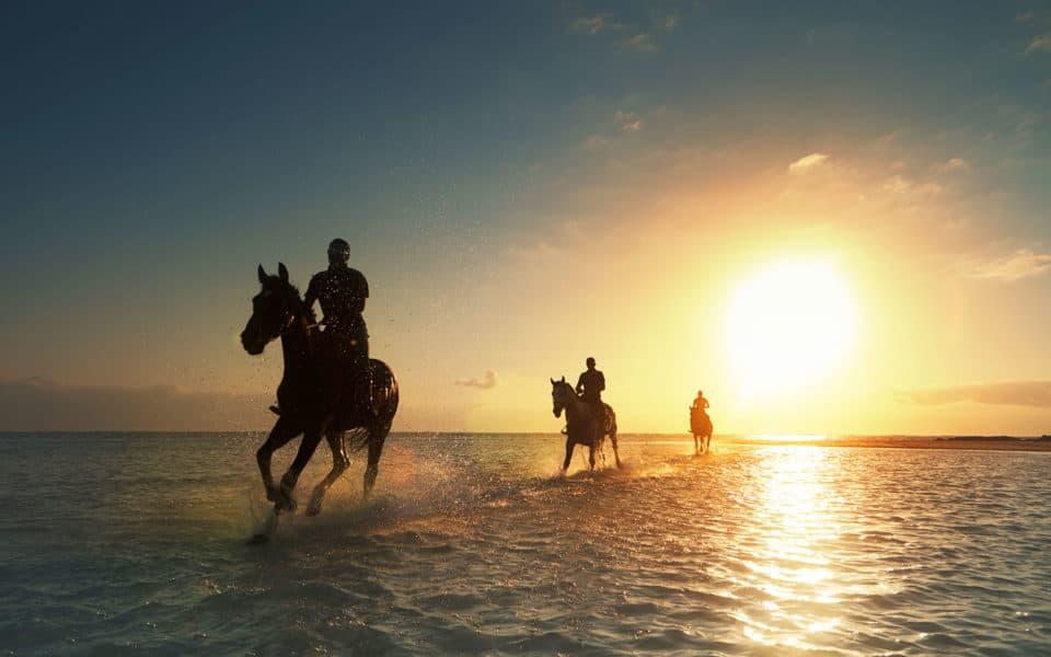LUX-Belle-Mare-Aerial-Beach-Horses
